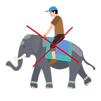 Elephants en liberté